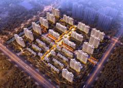 碧桂园新城
