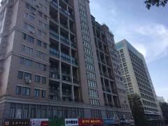 (东城区)阳光天地个人出售1室1厅1卫46.62m²中档装修